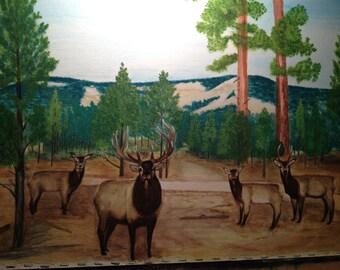 Bethel Ridge Elk