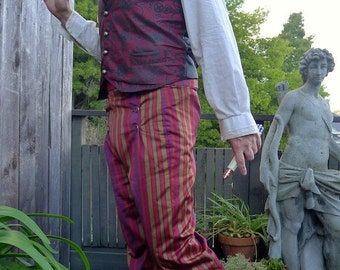 Purple and Maroon Stripe 6 Button Flap Front Steampunk Tapestry Pants