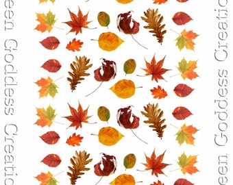 Various Autumn Water Slide Nail Decals - Transparent
