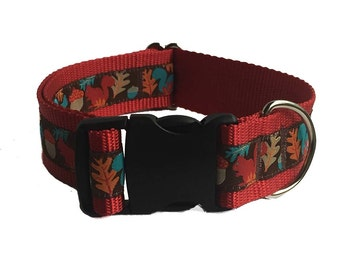 "1.5"" Squirrel Patrol Wide Dog Collar or Martingale"
