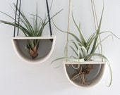 Half Moon Air Plant Hanger - Made to order
