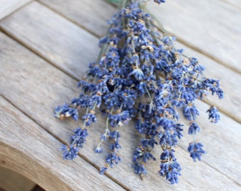 Dried lavender-French Grosso or English Lavender-SMALLER bundles-French Grosso dried or dyed 30 stems