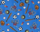 ON SALE Blue Sports Fabric - Welcome to Bear Country - Berenstain Bears - Moda - 55504 13
