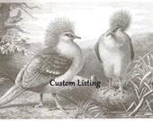 Custom Listing for babiet386
