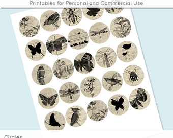 "Vintage Nature Birds Butterfly 1"" 1.25"" and 1.5 Inch Circles Collage Sheet for Glass and Resin Pendants Bottle Caps Digital Download JPG"