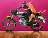 214 Zündapp Cats - folded art card 15x15cm/6x6inch with envelope