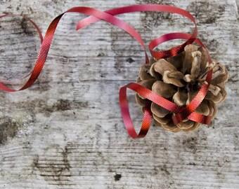 Christmas decor, christmas photo, holiday art, pine cone rustic, red ribbon decoration, cottage wall art, nature still life, acorn fine art