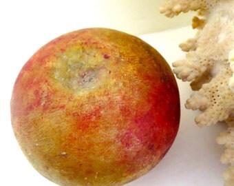 Vintage marble apple Vintage stone apple Vintage marble fruit Vintage stone fruit Italian marble fruit Italian stone fruit Made in Italy