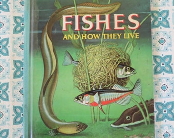 FUN VIntage Fishes Book from 1960