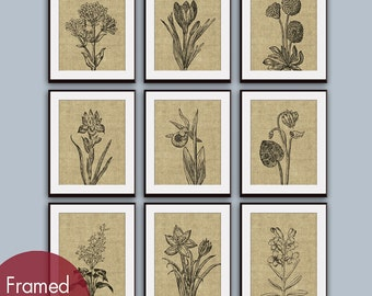 Wild Flower Botanical Prints (Series G2) Set of 9 - Art Prints (Featured in Coffee Burlap) Vintage Modern Art Prints