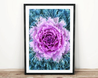 PRINTABLE wall art. Purple Kale 8x10 and 11x14. botanical, turquoise, purple, room decor, modern decor