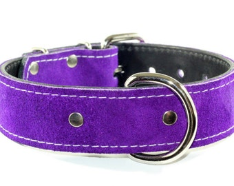 Royal Purple Suede Leather Dog Collar With Nickel Hardware (Made In Ca)
