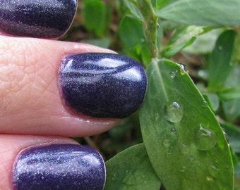 Jeweled Purple Nail Polish (vegan)