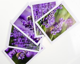 Lavender with Bee.  Notecard Set. Set of 5 photo cards blank inside.  Each card shows a different photograph.