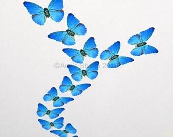 12 Small Paper Butterflies, Realistic 1 inch Paper Butterflies - Blue Butterfly