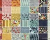 PB & J by Basic Grey for Moda Fabrics - 40 Fat 1/8ths Precuts Bundle