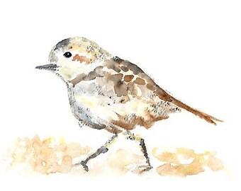 Plover, Beach Bird Watercolor, Print, Sepia Beach Decor, Nautical Print, Coastal Decor, Beach Watercolor Painting, Beach Theme Nursery Print