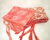 14 Schiaparelli Lingerie Bags Pink Red Cream White