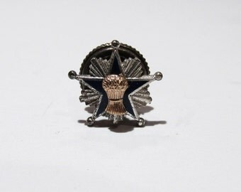 Vintage Sterling Eastern Star Badge Pin Medal Sheaves sheaf of Barley Ruth OES