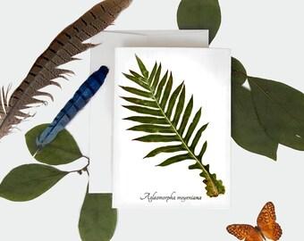 Bear Paw Fern Botanical Card - Botanical Greeting Card - Size A7