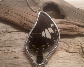 Real Butterfly jewelry, butterfly wing Necklace, butterfly jewelry, butterfly pendant, jewelry