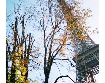 Paris in Autumn Photography, Eiffel Tower in Autumn, Original EIFFEL TOWER Photo, Paris 7th Arrondisement, Paris in Autumn, Autumn in Paris