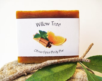 Citrus Spice- Natural Bath & Body Bar