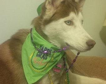 Happy Mardi Gras Babe Dog Bandana with Embroidered Beads