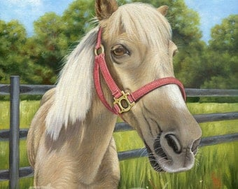 Horse Portraits in Oil, Custom Horse Portraits, Horse Paintings, Pet Paintings