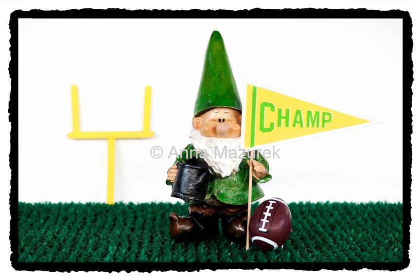 Football Gnome Birthday Card Boy Birthday Card Funny Sports