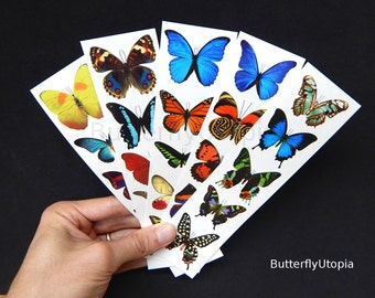 Temporary Fake Butterfly Tattoos (Free Shipping!) - 5 sheets