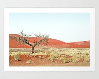 Desert Photography Print