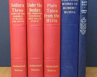 Old books in reds and blues, a compact collection of vintage fiction classics