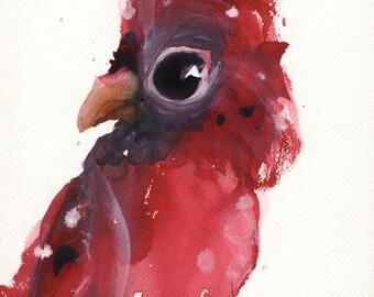 12 x 16 Cardinal Print, Bird Art Print
