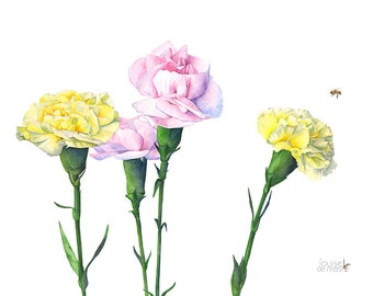 Carnations watercolor painting, Carnations print of watercolor painting. A4 size. C12416, Carnation print, Carnation watercolor painting