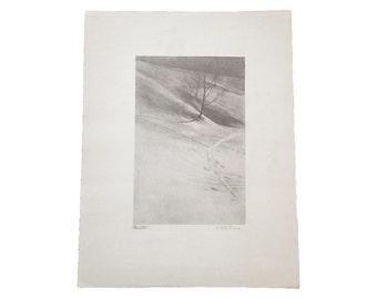 DISCOUNTED D.R. Peretti Griva Original Bromoil Transfer Tree Snow