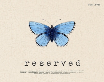 RESERVED for Cristina