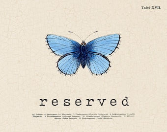 RESERVED for Nina