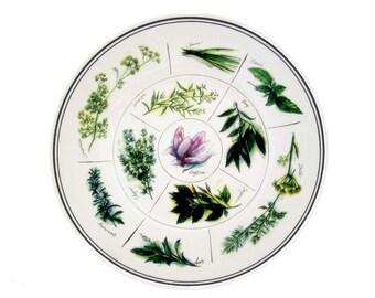 Williams Sonoma Herb Pasta Salad Serving Bowl Large 13 In