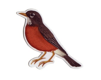 American Robin Bird Magnet / Nature Art / Refrigerator Magnet / Office Magnet / Party Favor / Small Gift