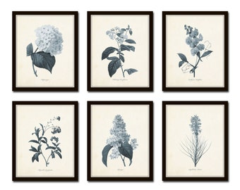 Blue Flowers Print Set No.1, Botanical Prints, Giclee, Wall Art, Flower Prints, Redoute Prints, Botanical Print Set, Collage, Blue Flowers