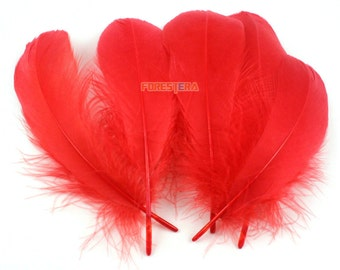 50 Pieces Red Feather 10-15cm (YM96)
