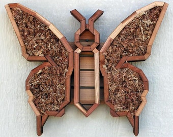 DIY Butterfly Succulent Planter Vertical Planter