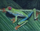 Red Eyed Frog Mixed Media Original Painting