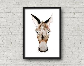 Donkey - Donkey face -PRINT