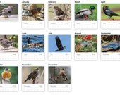 2016 Birds Photo Wall Calendar