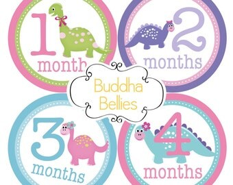 Dinosaur Baby Girl Monthly Baby Stickers Baby Month Stickers First Year Stickers Baby Girl Gift - Girl Dinosaur Month Baby Stickers G158