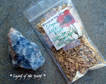 ANGELICA ROOT Dried Loose Herb - Blessing, Herbal Enchantments, Witches Apothecary, Botanical Magick, Herbal Magick, Witchcraft, Hoodoo