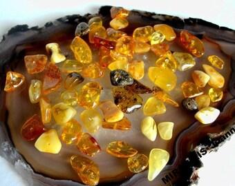 AMBER chips, 70 pcs pilished baltic amber