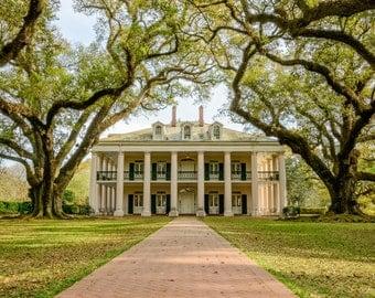 Oak Alley Plantation Photography Print - Louisiana Landscape - South USA - MetalPrint Option - 11x14 16x20 20x30 24x36 30x40